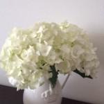 家に花を飾ること