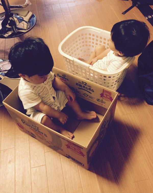 twins_8_2