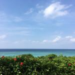 沖縄ファミリー旅行におすすめ「日航アリビラ」