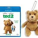 【受付終了/PRESENT】映画『テッド2』ブルーレイ&DVDリリース記念 テッドマスコットをプレゼント