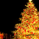 カフカさんからクリスマスの贈り物②