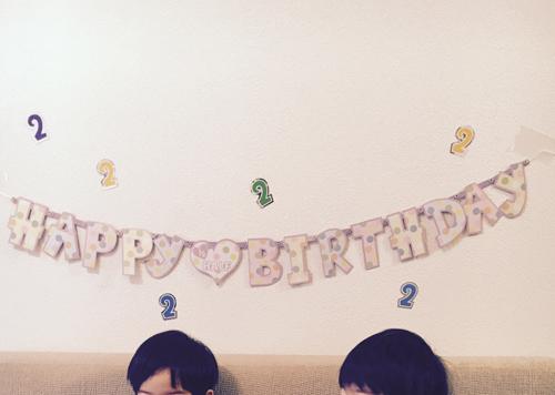 twins_33_1