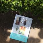 書店員さんおすすめの新刊本『ヨガとシンプルライフ』