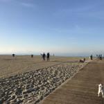 """第10回  朝の散歩でエネルギーチャージ! LA的""""海のある生活"""""""