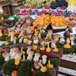 第21回 秋のパリで食べつくし! マルシェから家庭料理、注目レストランまでグルメリポート