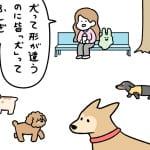 Report.27 犬の種類