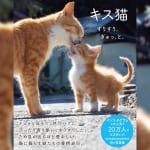 『キス猫 すりすり、ぎゅっ、と。』で ラブラブな猫たちの姿に癒やされたい!