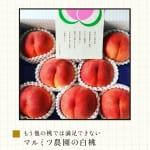#37【編集ライター arikoさん】arikoさん流のお料理のヒントについてのはなし
